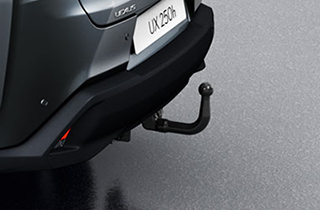 Vertical Detachable Towing Hitch