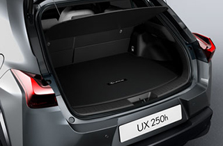 Trunk Mat with Mark Levinson sound system
