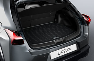 Trunk liner with Mark Levinson sound system