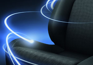 Lexus ProTect Interior