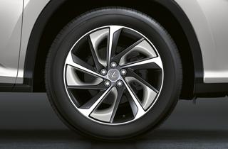 Alloy wheel black insert