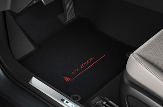 Υφασμάτινο πατάκι με λογότυπο σε κόκκινη απόχρωση UX 250h