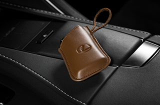 Sleutel cover Brown